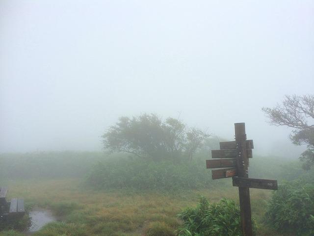写真 2014-08-17 10 29 44